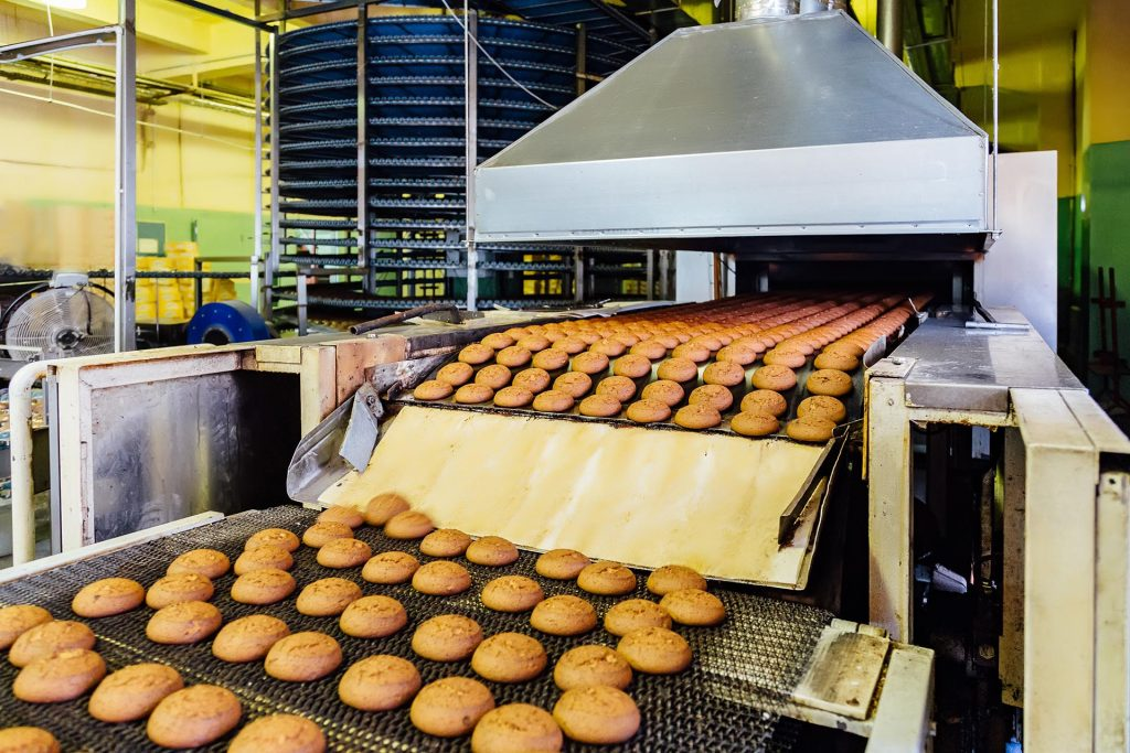 Production line of baking oat cookies. Biscuits on conveyor belt.
